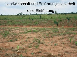 Landwirtschaft und Ernährungssicherheit eine Einführung