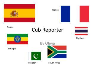 Cub Reporter