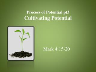Process of Potential pt3 Cultivating Potential
