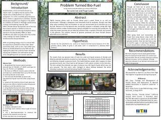 Problem Turned Bio-Fuel Using invasive  Arundo donax  as a source of bio-fuels