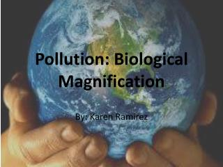 Pollution: Biological Magnification