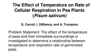 The Effect of Temperature on Rate of Cellular Respiration in Pea Plants ( Pisum sativum)