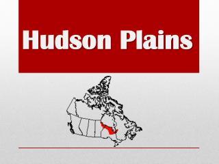 Hudson Plains
