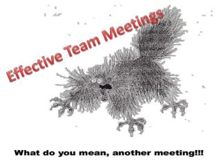Effective Team Meetings