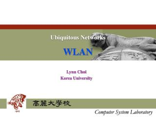 Ubiquitous Networks WLAN