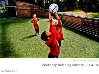 Workshop  helse  og omsorg  30.04.13