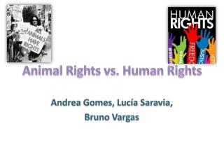 Animal  Rights vs.  Human Rights
