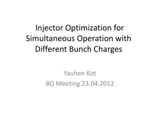 Injector  O ptimization for  S imultaneous O peration  with  Different  B unch  C harges