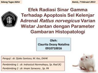 Pembimbing 1 : dr. Indrastuti Normahayu, Sp. Rad (K) Pembimbing 2 : dr. Imam Sarwono , Sp. PA