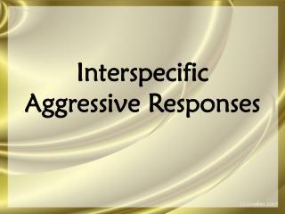 Interspecific  Aggressive Responses