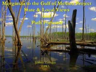 Morganza to the Gulf of Mexico Project State  Local Views and Path Forward