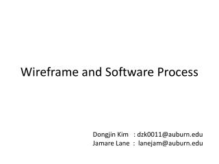 Wireframe and Software Process