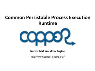 Common Persistable Process Execution Runtime