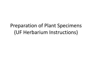 Preparation of Plant Specimens (UF Herbarium Instructions)