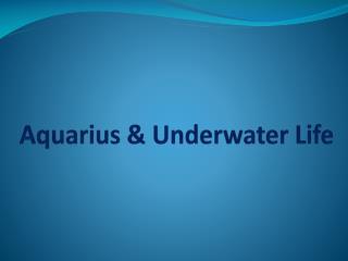 Aquarius & Underwater Life