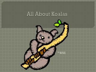 All  About Koalas