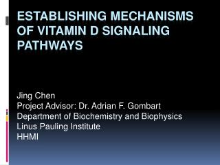Establishing Mechanisms of Vitamin D Signaling Pathways