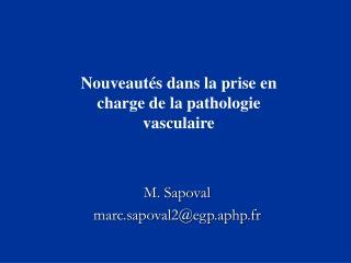 M. Sapoval marc.sapoval2egp.aphp.fr