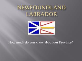Newfoundland Labrador