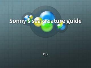 Sonny's sea creature guide