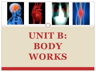 Unit B: Body Works