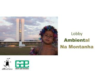 Lobby Ambient al Na Montanha