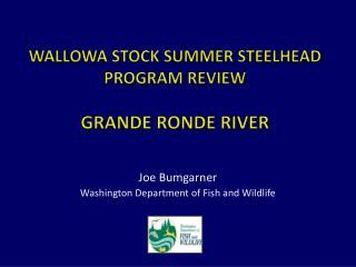 Wallowa Stock Summer Steelhead Program Review Grande  Ronde  River