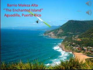 Barrio  Maleza  Alta ''The Enchanted Island''  Aguadilla, Puerto Rico