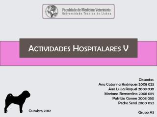 Actividades Hospitalares V