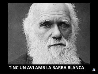 TINC UN AVI AMB LA BARBA BLANCA