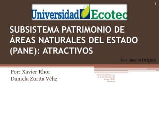 SUBSISTEMA PATRIMONIO DE ÁREAS NATURALES DEL ESTADO (PANE): ATRACTIVOS