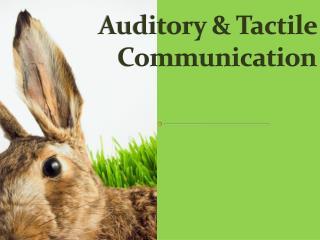 Auditory & Tactile  Communication