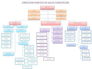 DIRECCION SERVICIO DE SALUD CONCEPCION
