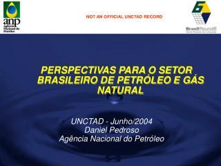 PERSPECTIVAS PARA O SETOR BRASILEIRO DE PETR LEO E G S NATURAL