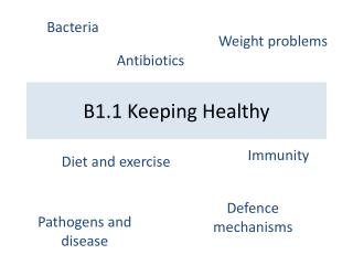 B1.1 Keeping Healthy