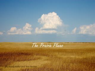 The Prairie Plains