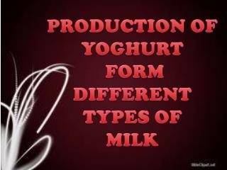 PRODUCTION OF YOGHURT  FORM DIFFERENT TYPES OF  MILK