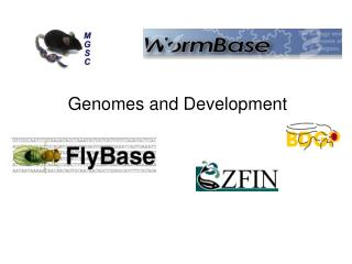 Genomes and Development