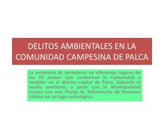 DELITOS AMBIENTALES EN LA COMUNIDAD CAMPESINA DE PALCA