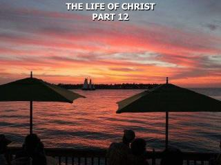 THE LIFE OF CHRIST PART 12