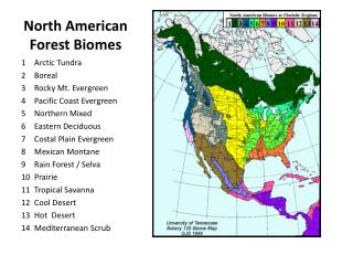 North American Forest Biomes