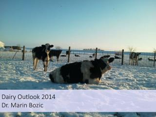 Dairy Outlook 2014 Dr. Marin Bozic