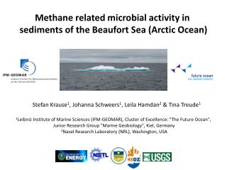 Methane related microbial activity  in  sediments  of  the Beaufort  Sea  (Arctic Ocean )