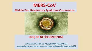 MERS- CoV Middle  East  Respiratory Syndrome Coronavirus