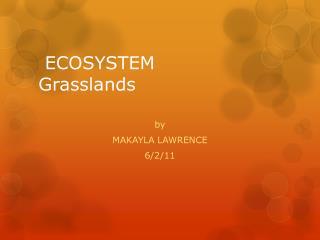 ECOSYSTEM Grasslands