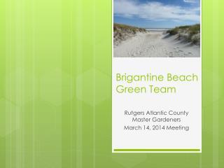 Brigantine Beach Green Team