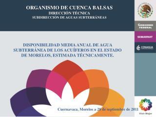 ORGANISMO DE CUENCA BALSAS DIRECCIÓN TÉCNICA SUBDIRECCIÓN DE AGUAS SUBTERRÁNEAS