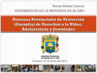 Procesos Provinciales de Protección (Garantía) de Derechos a la Niñez, Adolescencia y Juventudes
