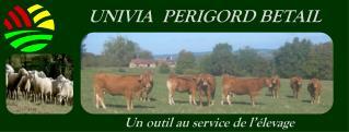 UNIVIA  PERIGORD BETAIL