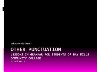 OTHER PUNCTUATION Lessons in grammar for students of Bay Mills Community college Ildikó Melis